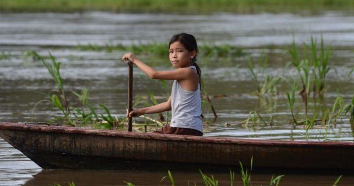Artistas internacionales recaudaron más de medio millón de soles para la amazonia peruana