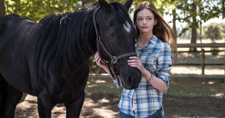"""""""Belleza Negra"""", película inspirada en la novela clásica de Anna Sewell, se entrena en Disney+"""