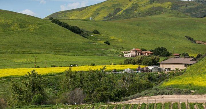 ¡Atención, viajero! El Valle de Santa María, en Estados Unidos, paga a los turistas para que la visiten