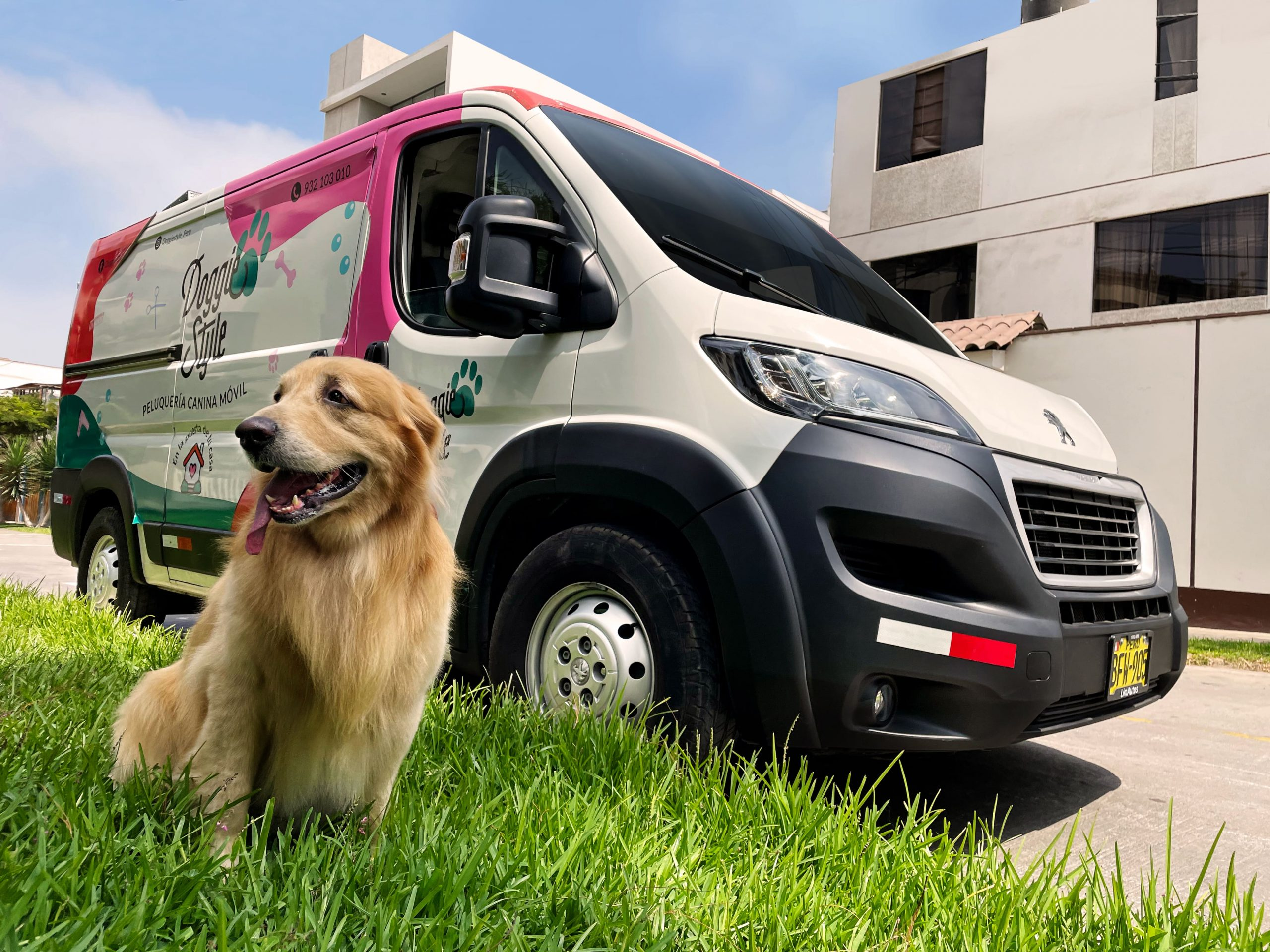 Emprendimiento elige a flota Boxer de Peugeot para brindar servicio premium a mascotas