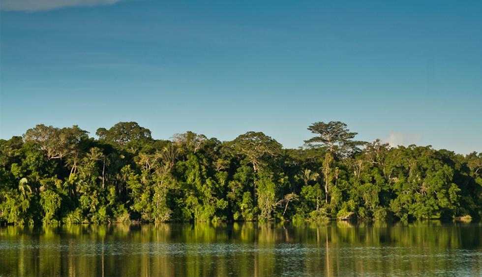 Seis curiosidades desconocidas sobre el Amazonas