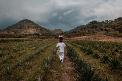 Proyecto Conecta: el poder de los negocios para las soluciones de agua, saneamiento e higiene